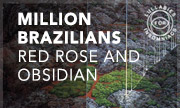 MILLION BRAZILIANS - Red Rose And Obsidian (Lullabies For Insomniacs)