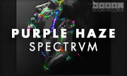PURPLE HAZE - SPECTRVM (Doorn)