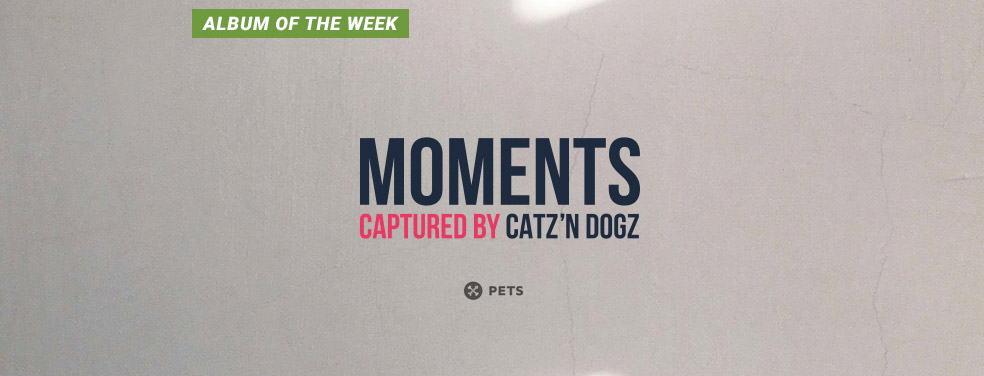 CATZ 'N DOGZ - Moments (Pets Recordings)