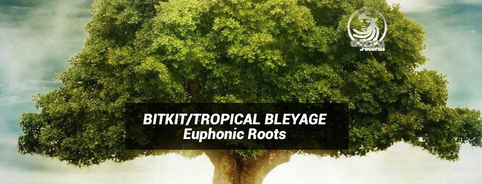 BITKIT/TROPICAL BLEYAGE - Euphonic Roots (Dacru Belgium)
