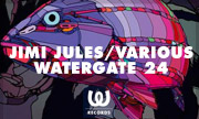 JIMI JULES/VARIOUS - Watergate 24 (Watergate)