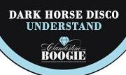 DARK HORSE DISCO - Understand (Clandestine Boogie) - exclusive 15-11-2018