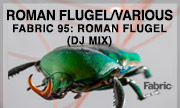 ROMAN FLUGEL/VARIOUS - Fabric 95: Roman Flugel (DJ mix) (Fabric Worldwide)