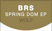 BRS - Spring Dom EP (Wolf Music Recordings)