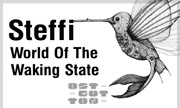 STEFFI - World Of The Waking State (Ostgut Ton Germany)