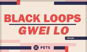 BLACK LOOPS - Gwei Lo (Pets Recordings Germany)